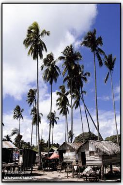 Perkampungan Nelayan, PulauMabul