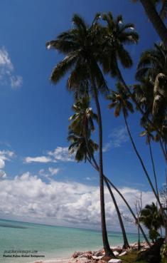 Resort PulauMabul